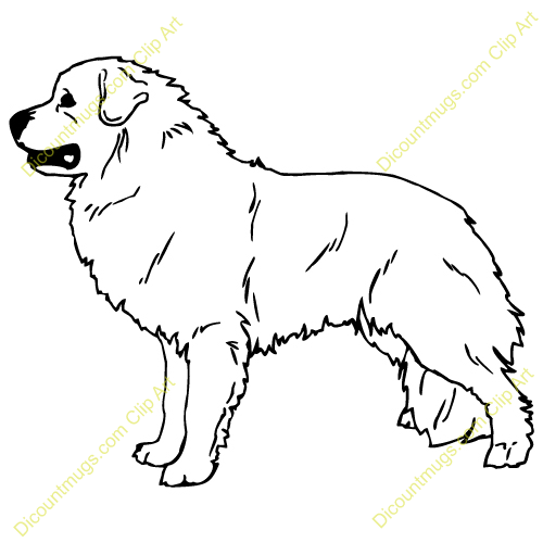 Free Great Pyrenees Dog Clipart