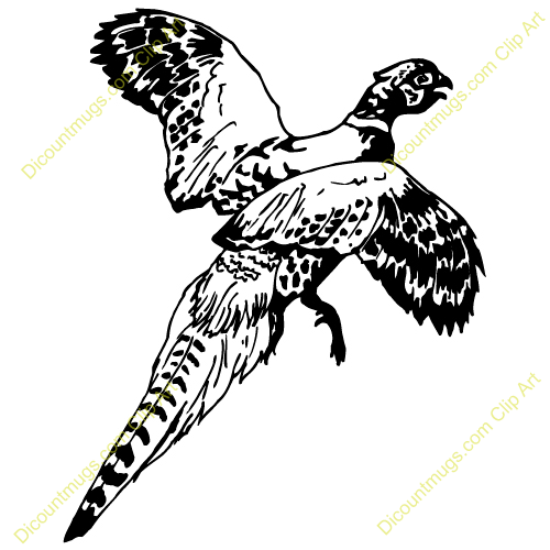 ... pheasant buy a 10oz coffee mug with this pheasant clip art buy a