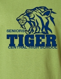 Senoirs 2014 Central High