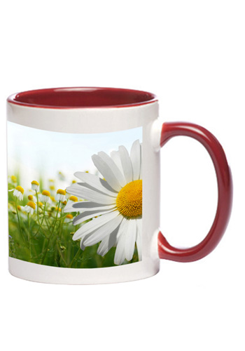 20f0a2b380b Custom Promotional Products & Printed Gifts | DiscountMugs