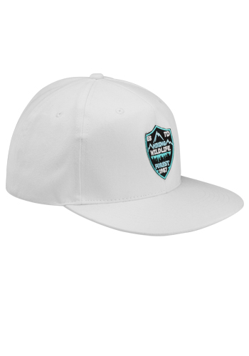 53b74778e Riverton Flat Bill Snapback Hats | CAP92