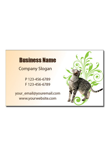 Cheap Customizable Cat Business Card Magnets MBBC