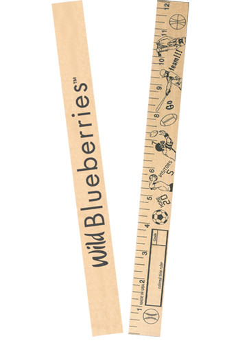 Farm Animals Color  Rulers | AK90615