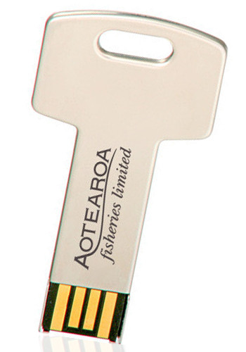 Key USB 8GB Flash Drives | USB0798GB