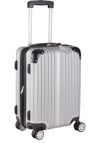 Metallic Upright Expandable Luggages with Tag | LE589365