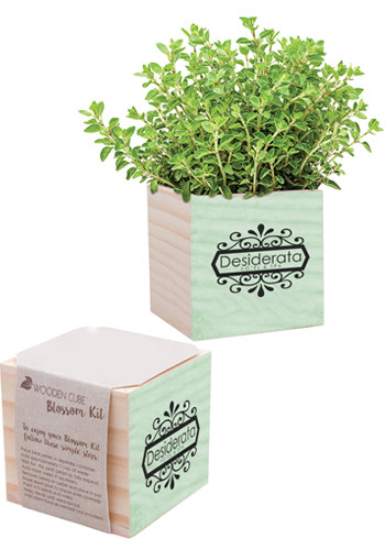 Personalized Parsley Natural Pine Wooden Cube Blossom Kits