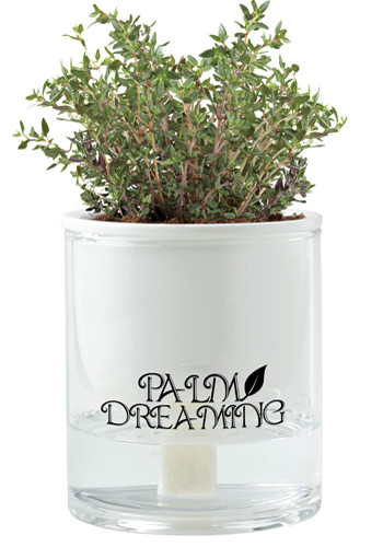 Self Watering Planters| IL5664