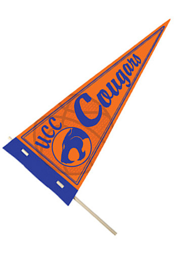 Sports Pennants | CPSSP101