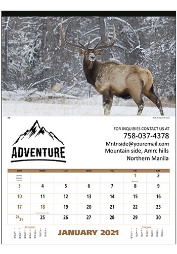 Triumph North American Wildlife Calendars | X11489