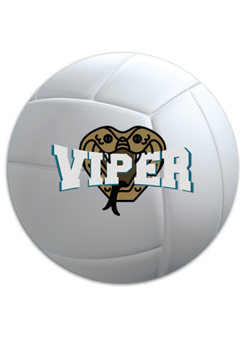 Custom Car Magnets Wholesale DiscountMugs - Custom volleyball car magnets