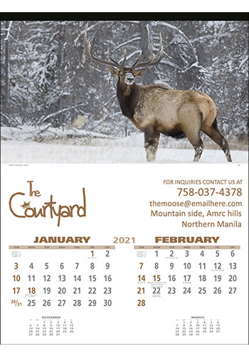 Wildlife Photography Wall Calendars | X11507