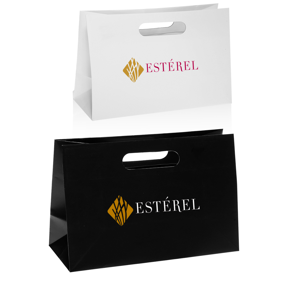 Printed Mod Paper Bags Wholesale